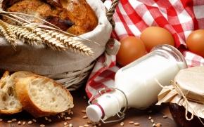 alimentos que provocam alergia alimentar