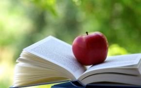 lanches escolares - frutas uma boa opção