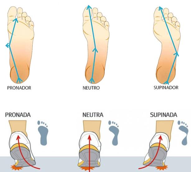 Resultado de imagen de debe sobrar un dedo entre el final de los dedos y el final de la zapatilla