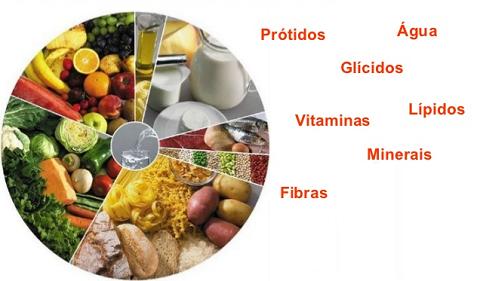 tabela dos alimentos