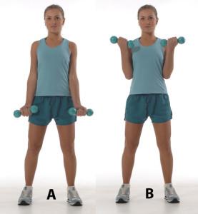 treino para os biceps com halteres
