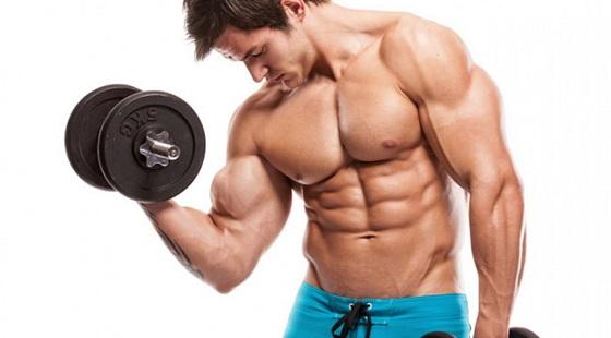 dedicação para o ganho de massa muscular